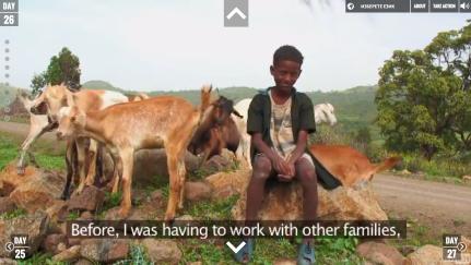 Day 26: FIVE GOATS MEAN ALOT IN EBINAT, ETHIOPIA