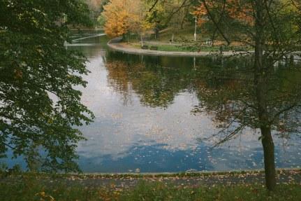 Pond wanderings